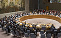 Report on the CAR submitted pursuant to paragraph 48 of Security Council resolution 2127 (2013)