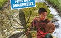 Journée de la santé : l'ONU appelle à mieux lutter contre les maladies à transmission vectorielle